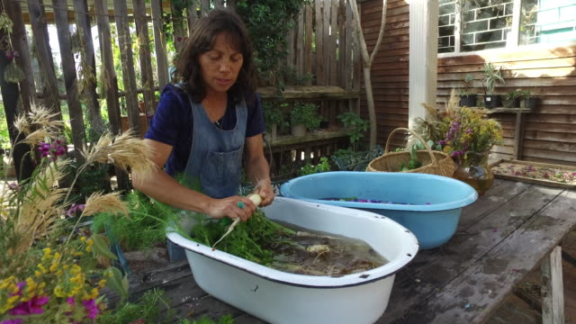 a woman foraging and preparing natural food. - social issues stock videos & royalty-free footage