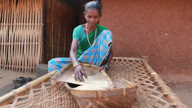ws of a woman in a blue sari that is processing seeds in front of a mud hut on wooden lounger in a small village in a rural area about 300 kilometer... - indigenous culture stock videos & royalty-free footage