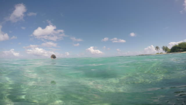 a woman plays in the water with her son - huahine island stock videos and b-roll footage