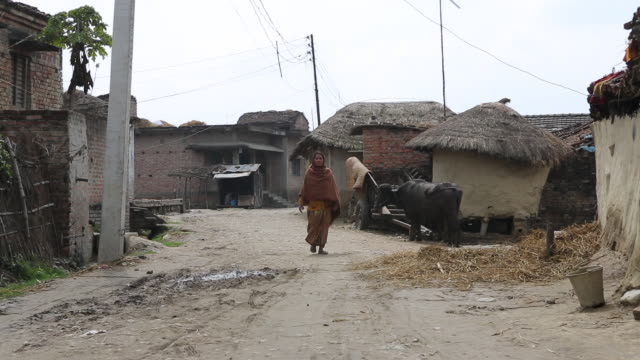 ws of a woman who is walking on muddy dirt road in a village near birgunj a border town in parsa district of southern nepal near bigunj several... - strohdach stock-videos und b-roll-filmmaterial