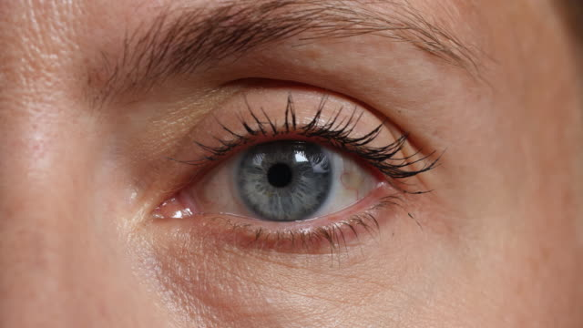 stockvideo's en b-roll-footage met cu of a woman's left eye - menselijk oog