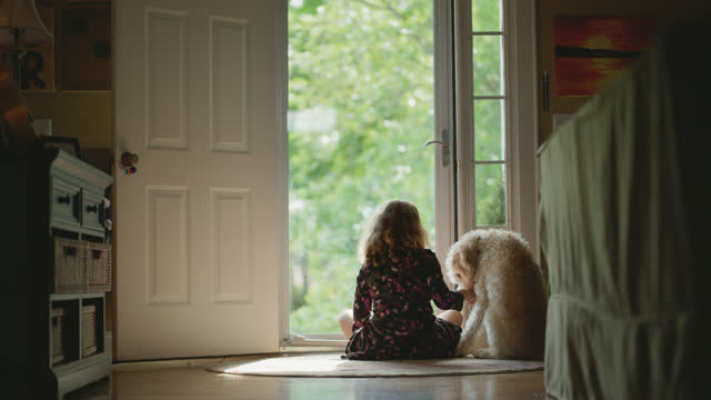 ls of a young girl comforting her dog at the front door - bonding stock videos & royalty-free footage