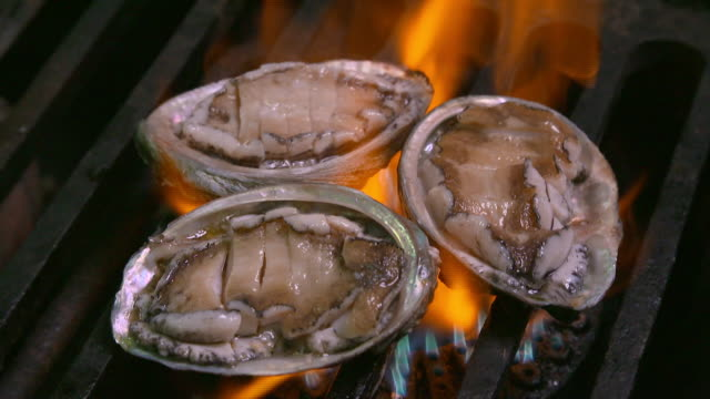 abalones being grilled on the grill (korean food) - grigliare video stock e b–roll