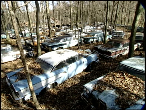 abandoned cars are scattered throughout a forest junkyard. - abandoned stock videos & royalty-free footage