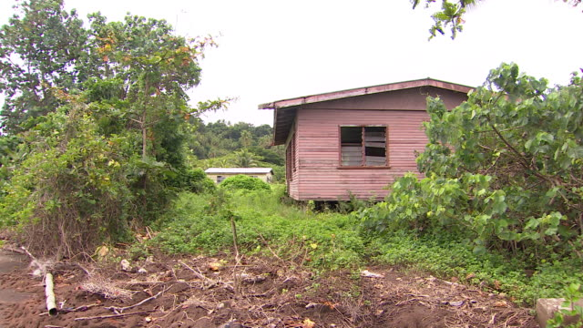 vidéos et rushes de abandoned dwelling with broken shutters among vegetation in vunidogola fiji after village has been relocated due to encroaching coastal waters from... - océan pacifique sud