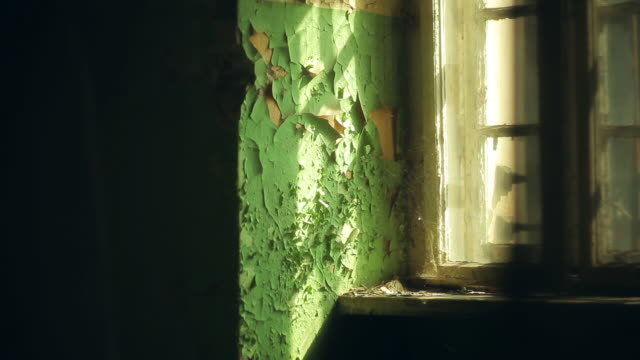 Abandoned house. Flaky paint and old window