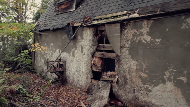 abandoned old shack - back - shack stock videos and b-roll footage