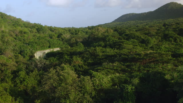 ws aerial pov abandoned us navy bunkers surrounded by lush in jungle / vieques, puerto rico, united states - bomb shelter stock videos & royalty-free footage