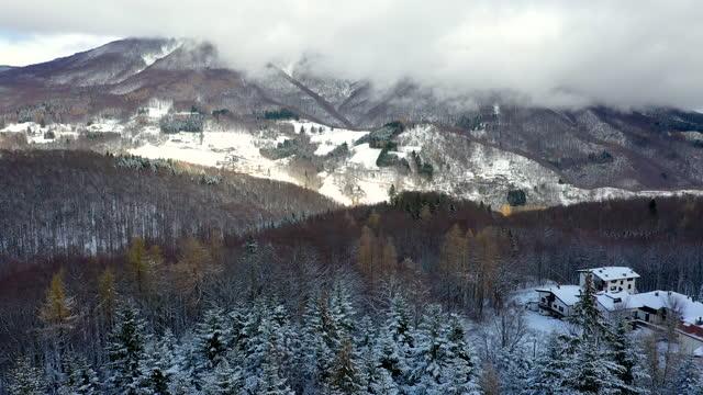 abetone forest in winter, tuscany, italy - toskana stock-videos und b-roll-filmmaterial