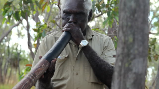 ms tu td aboriginal man playing didgeridoo / northern territory, australia - australian aboriginal culture stock videos and b-roll footage