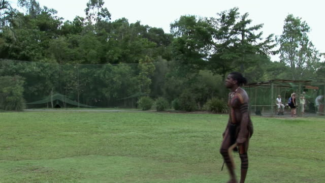 ms pan aboriginal man throwing and catching flying boomerang on field, queensland, australia - ブーメラン点の映像素材/bロール