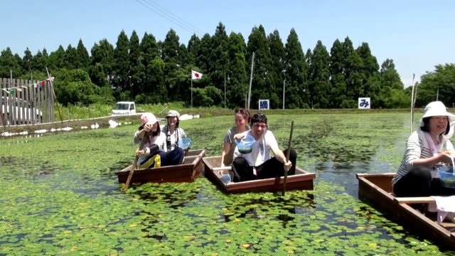 About sixty participants competed to catch sprouts of an aquatic plant called water shield riding on a squareshaped traditional wooden boat The town...