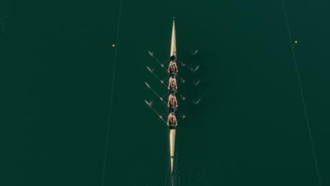 vídeos y material grabado en eventos de stock de aérea por encima de un cuádruple scull deslizándose a través de un lago - cuatro personas