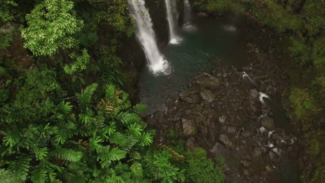 Above A Tropical Waterfall