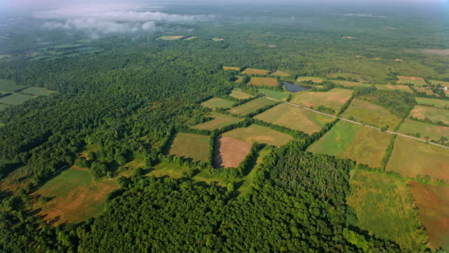 vídeos y material grabado en eventos de stock de aerial por encima de granjas y campos en un día soleado en ontario - ontario canadá