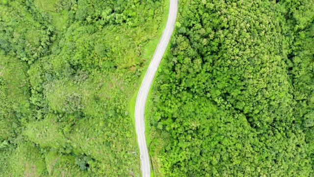 above of asphalt highway through on top of valley with tropical rainforest - zona pedonale strada transitabile video stock e b–roll