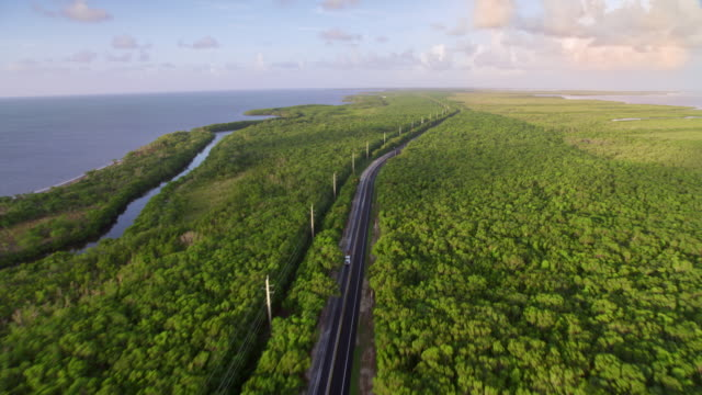 aerial above state road on key largo, fl in the light of the rising sun - florida us state stock videos & royalty-free footage