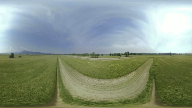 AERIAL VR 360: Above the pastures and fields in sunshine