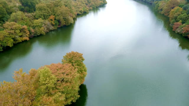 vídeos de stock e filmes b-roll de above town lake or colorado river nature landscape along waters edge fall autumn with colorful leaves and calm waters of austin , texas - town