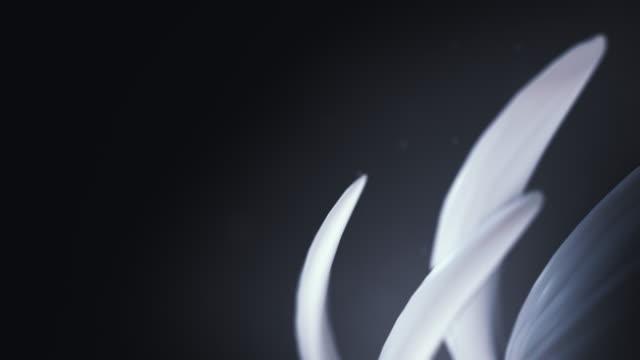 暗い背景に抽象的なアニメーションの形