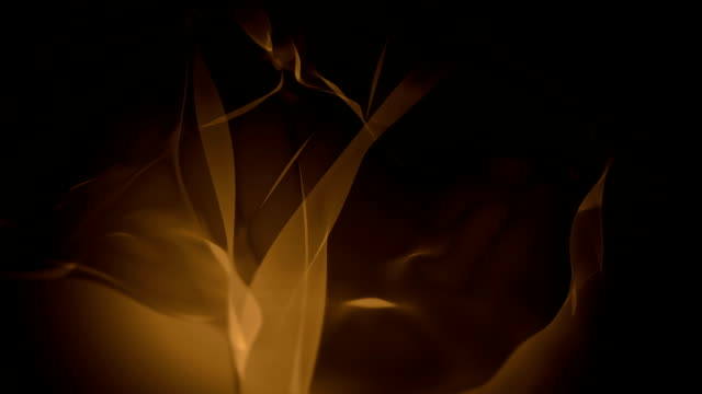 abstract bacgrounds brown (loopable) - brown stock videos & royalty-free footage