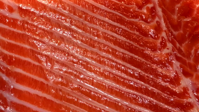 abstract background fresh salmon texture - raw food stock videos & royalty-free footage