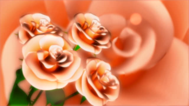 abstract background of roses turning - bouquet stock videos & royalty-free footage