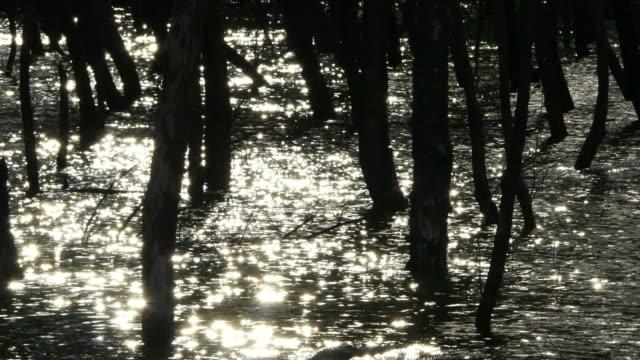 abstracte achtergrond van water oppervlakte schittering van zonlicht