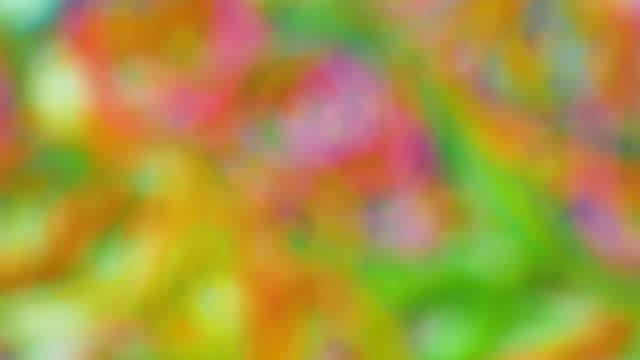 vídeos de stock e filmes b-roll de abstract defocussed colours rotate - psychedelic