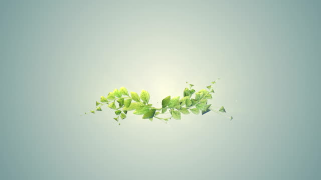 abstract digitaly plant growth background - flower stock videos & royalty-free footage