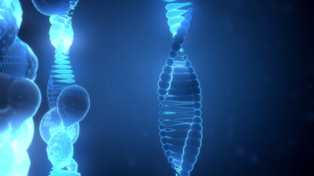 abstract dna strings on blue background - chromosome stock videos and b-roll footage