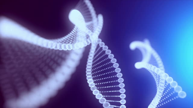 abstract dna. - chromosome stock videos & royalty-free footage