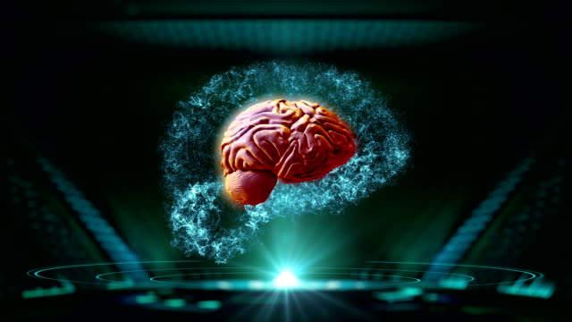 abstract electric circuit digital brain. - midbrain stock videos & royalty-free footage