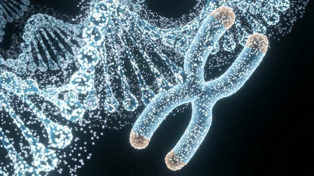 abstract genetics disease - chromosome stock videos & royalty-free footage