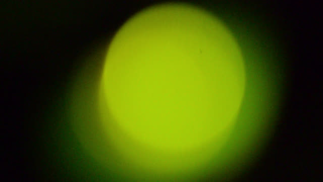 abstract green flashing light of firefly, japan. - 光点の映像素材/bロール