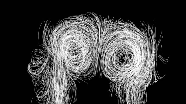 vídeos de stock e filmes b-roll de abstract line art - orgânico