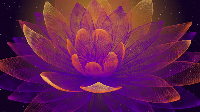 abstract lotus background - fractal stock videos & royalty-free footage