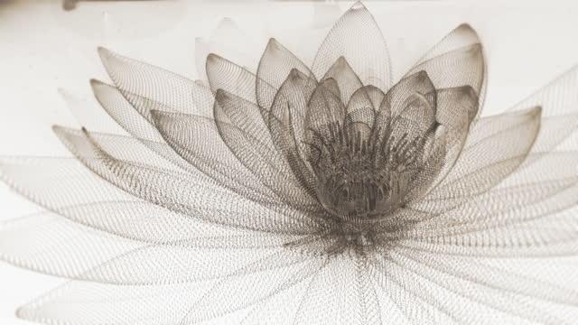 抽象ロータスの背景 - フラクタル点の映像素材/bロール