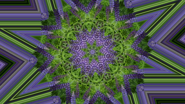 Abstract natural background, kaleidoscope effect, flowers, leaves
