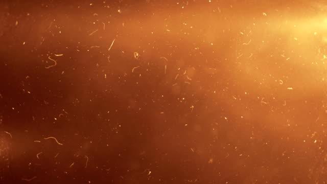 vídeos y material grabado en eventos de stock de abstracto fondo de partículas - vendaval de polvo