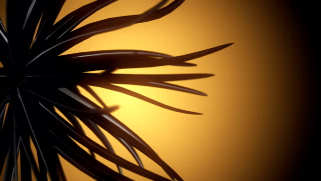 vídeos y material grabado en eventos de stock de abstract de forma (en bucle) - diseño natural