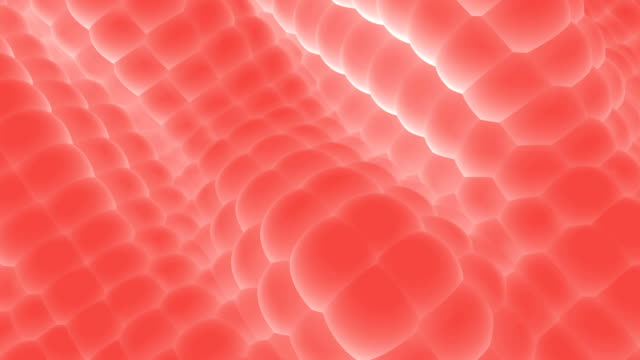 abstract spheres large (pink) - animazione biomedica video stock e b–roll