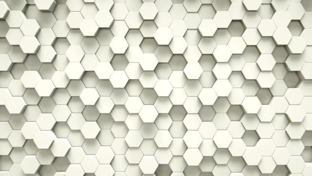 stockvideo's en b-roll-footage met abstract witte zeshoek geometrische oppervlak | loopable - rooster print