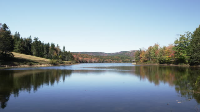 acadian lake wide in real time with foliage - 湖点の映像素材/bロール