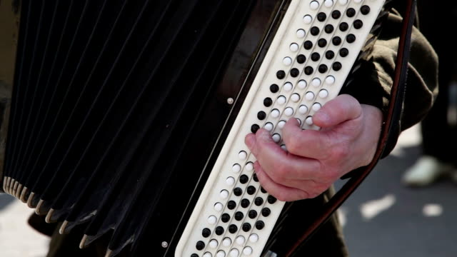 80 Top Accordion Instrument Video Clips & Footage - Getty Images