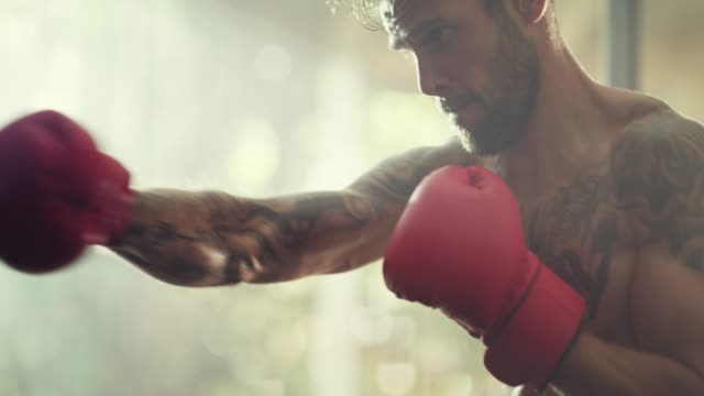 achieving his goals one punch at a time - boxing stock videos & royalty-free footage