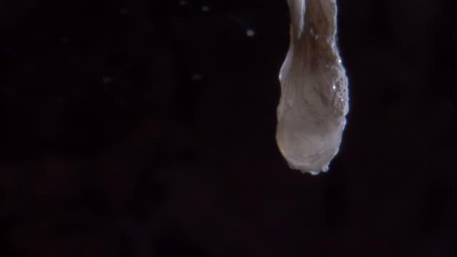 Acidic water drips from a snottite in Cueva de Villa Luz, Mexico. Available in HD.