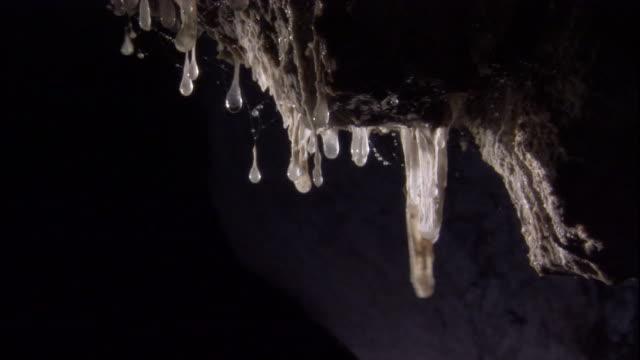 vídeos de stock, filmes e b-roll de acidic water drips from snottites in mexico's cueva de villa luz. available in hd. - stalactite