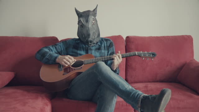 acoustic guitarist with wild boar head playing guitar - performer stock videos & royalty-free footage