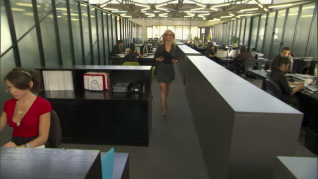 ws pan across busy office with people working at their desks/ sydney, australia - receptionist stock videos and b-roll footage